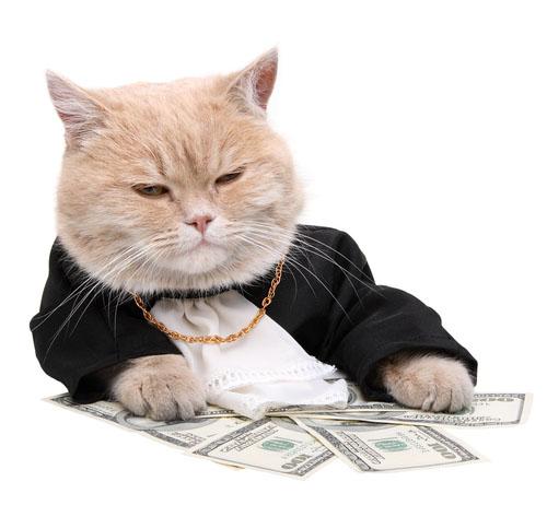 Вывод денег с RBK money