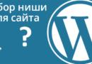 Выбор ниши для сайта на движке WordPress