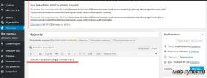 Javascript в WordPress размещение